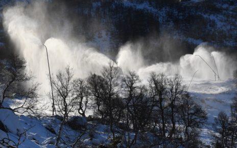 Et bilde som inneholder snø, tre, utendørs, natur Automatisk generert beskrivelse