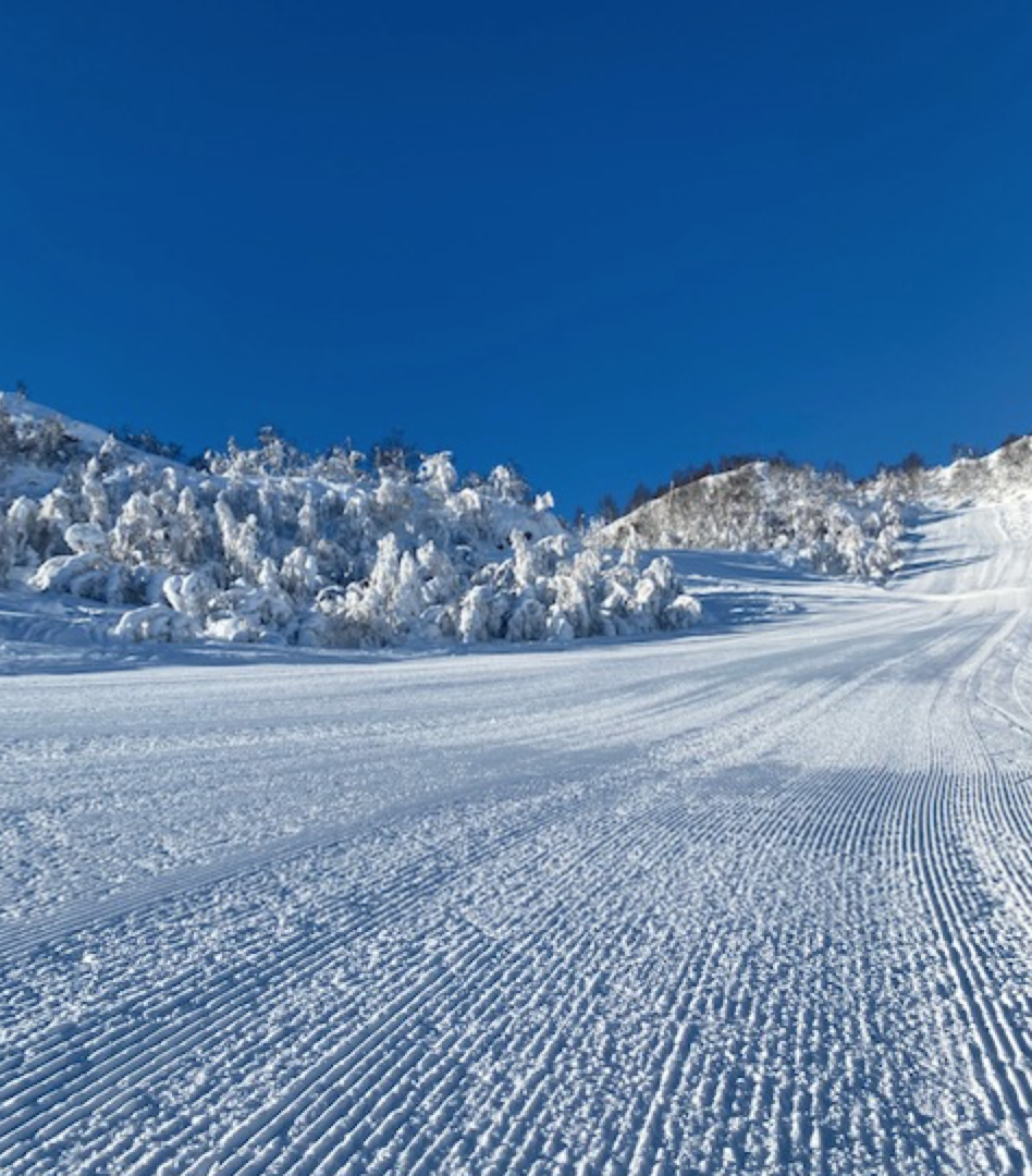 Et bilde som inneholder snø, utendørs, himmel, natur  Automatisk generert beskrivelse