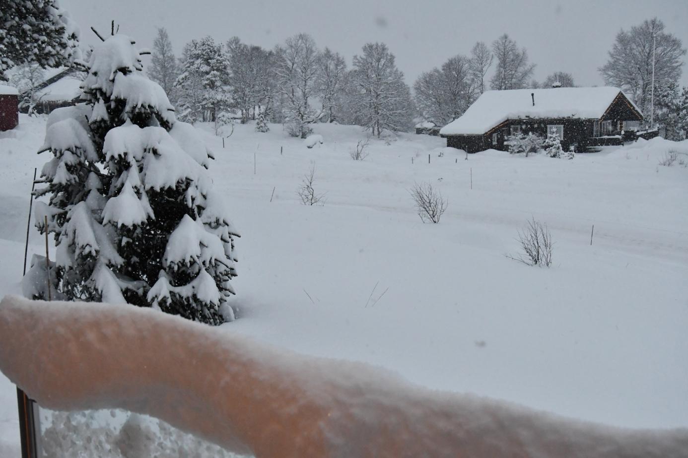 Et bilde som inneholder snø, utendørs, himmel, person  Automatisk generert beskrivelse