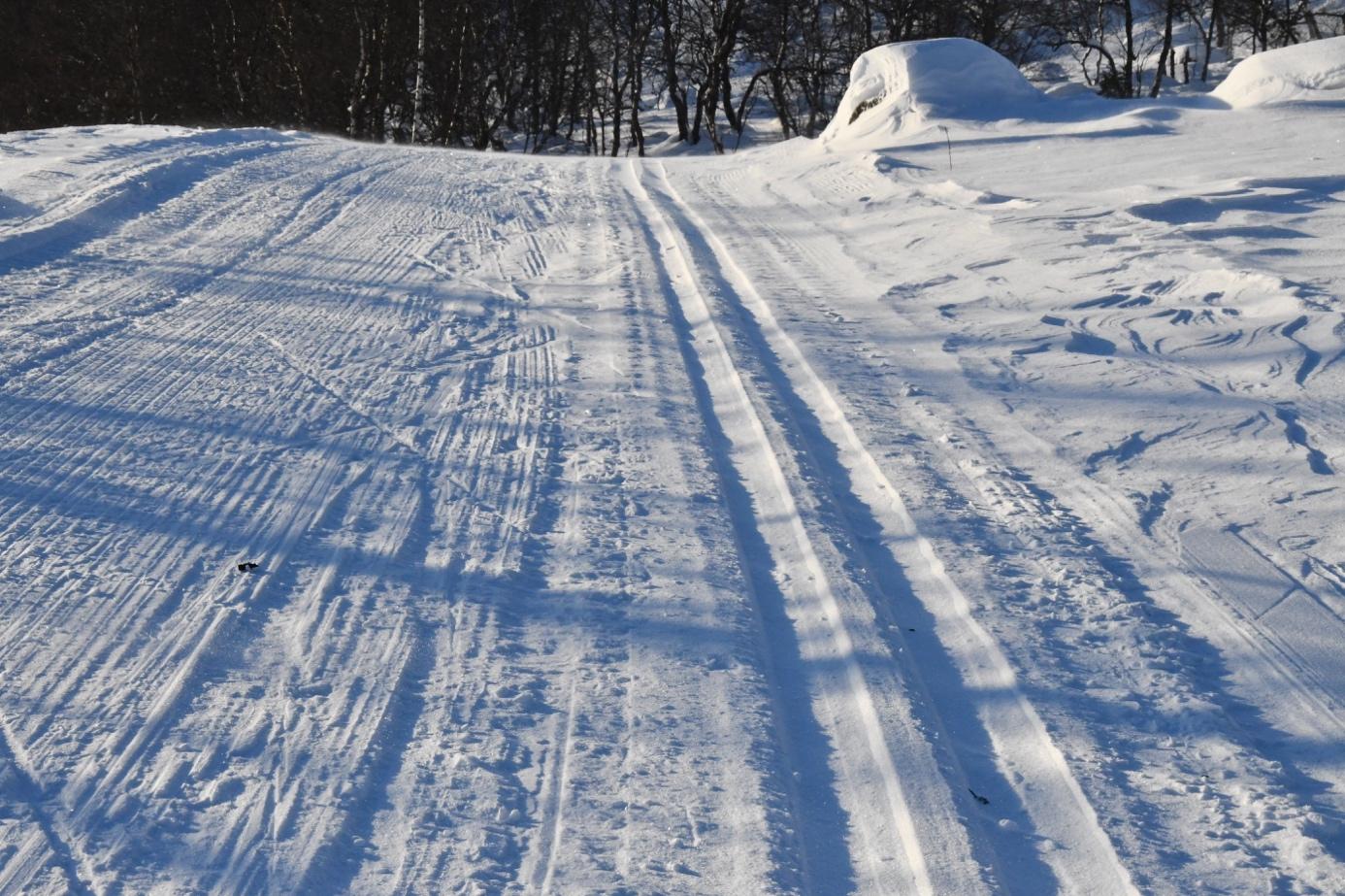 Et bilde som inneholder snø, utendørs, natur, skibakke  Automatisk generert beskrivelse