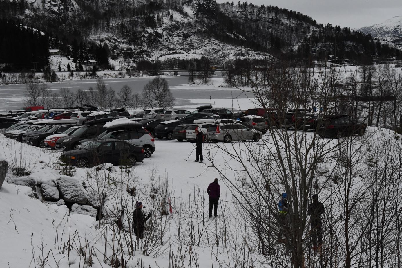 Et bilde som inneholder utendørs, snø, tre, natur  Automatisk generert beskrivelse