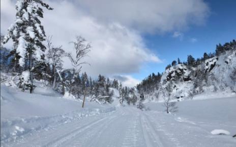 Et bilde som inneholder utendørs, snø, himmel, gå på ski Automatisk generert beskrivelse