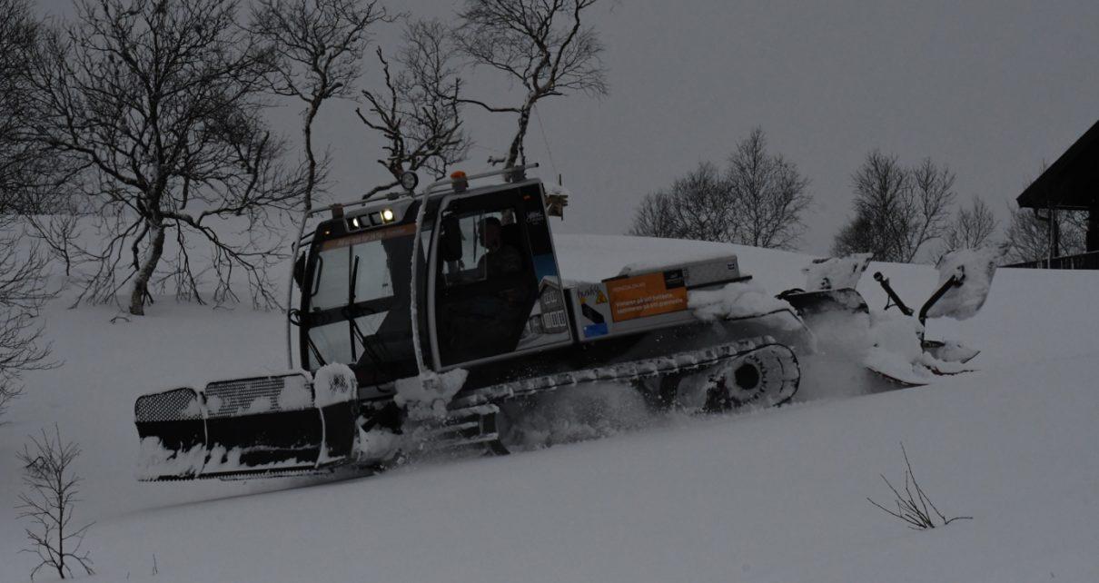 Et bilde som inneholder utendørs, tre, snø, himmel Automatisk generert beskrivelse