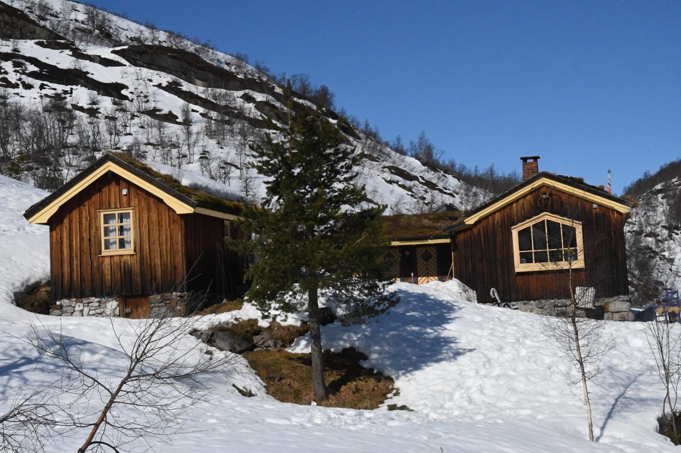 Et bilde som inneholder snø, utendørs, himmel, tre  Automatisk generert beskrivelse