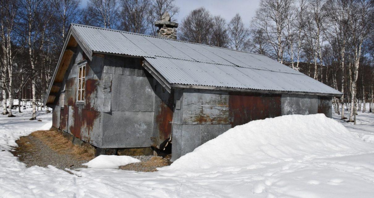 Et bilde som inneholder snø, utendørs, tre, gå på ski Automatisk generert beskrivelse