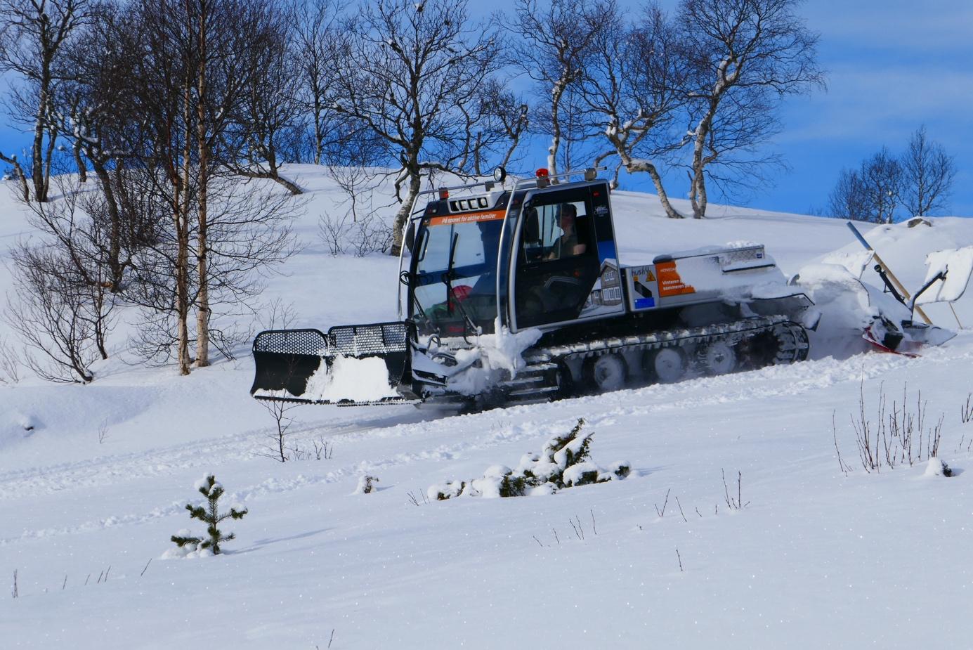 Et bilde som inneholder snø, utendørs, tre, skiheis  Automatisk generert beskrivelse