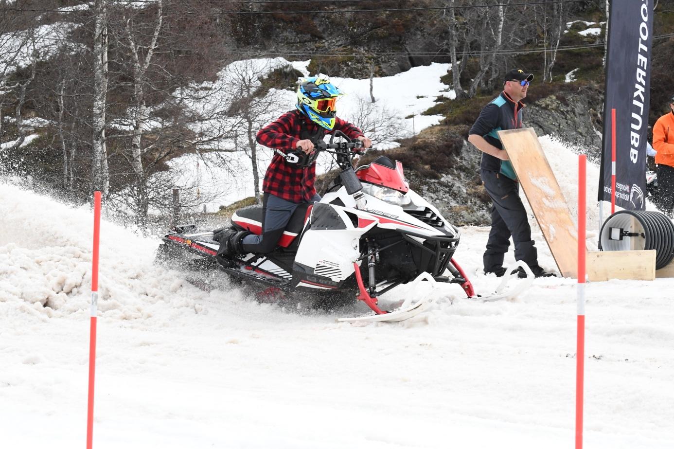 Et bilde som inneholder snø, tre, utendørs, gå på ski  Automatisk generert beskrivelse
