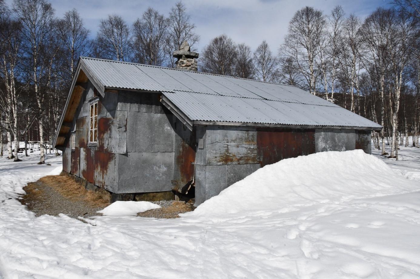 Et bilde som inneholder snø, utendørs, tre, himmel  Automatisk generert beskrivelse