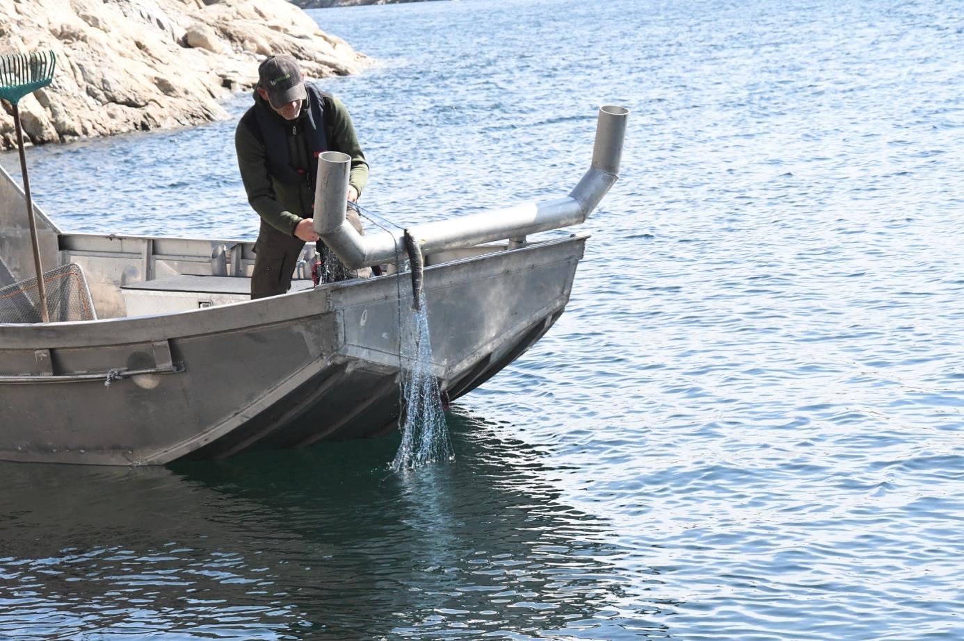 Et bilde som inneholder vann, utendørs, båt, transport  Automatisk generert beskrivelse