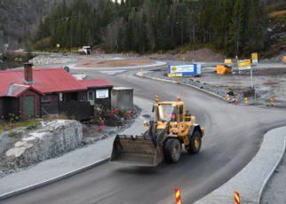 Et bilde som inneholder tre, utendørs, bilvei, asfalt Automatisk generert beskrivelse